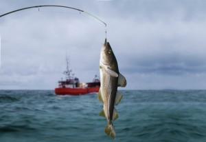 saltwater-fishing